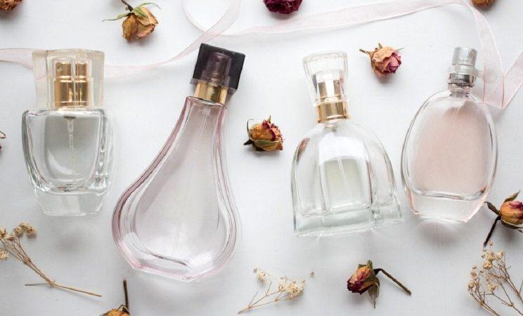The Surprising Origin of the Musky Perfume